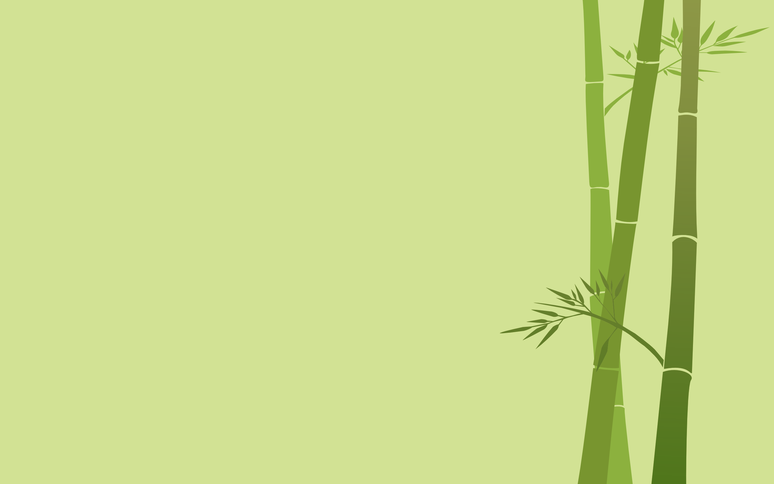 desktop-bamboo-hd-wallpapers-images-download | wallpaper.wiki