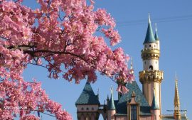 Disneyland Wallpapers Free Download