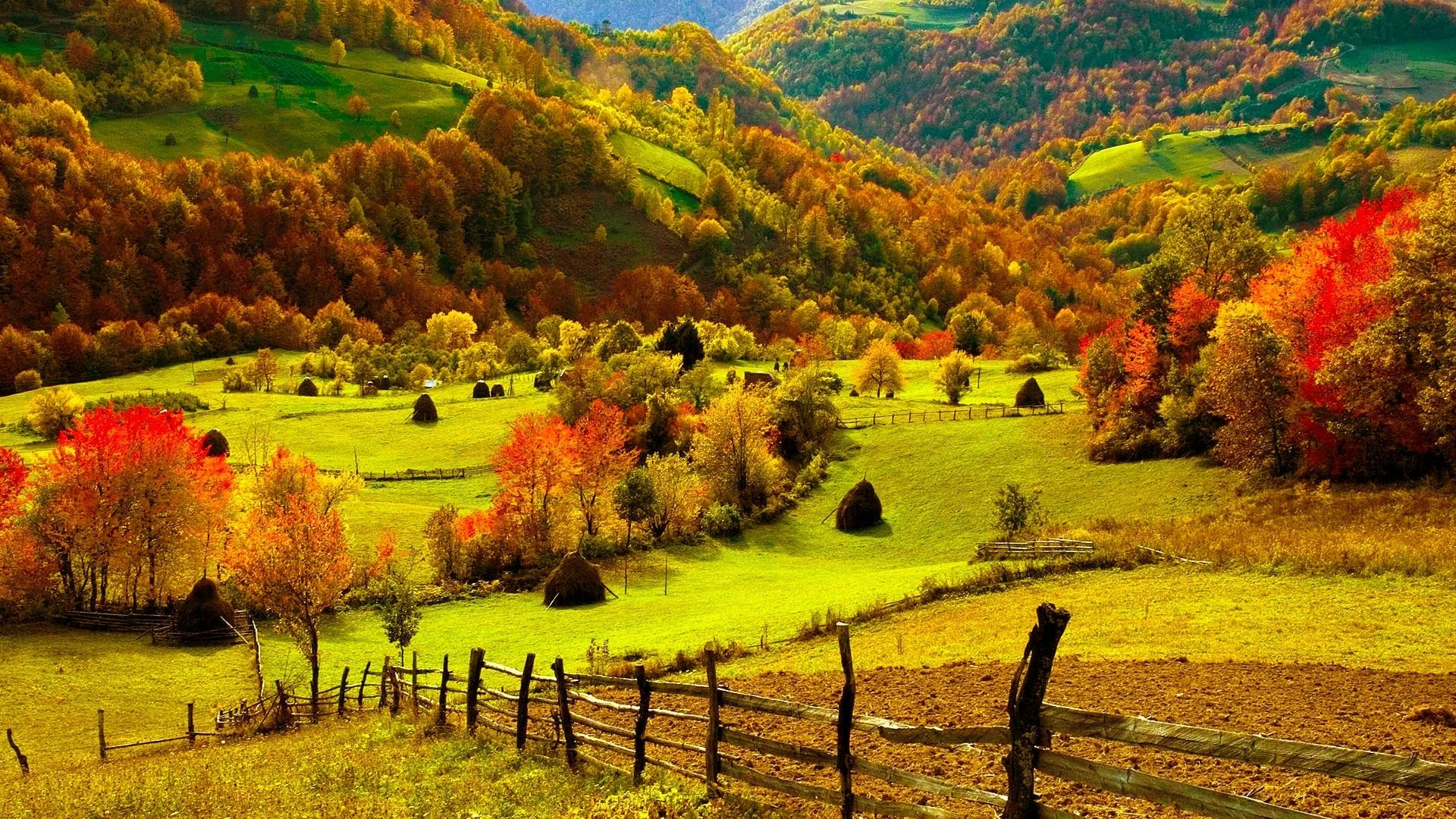 fall-scenery-wallpaper-hd | wallpaper.wiki