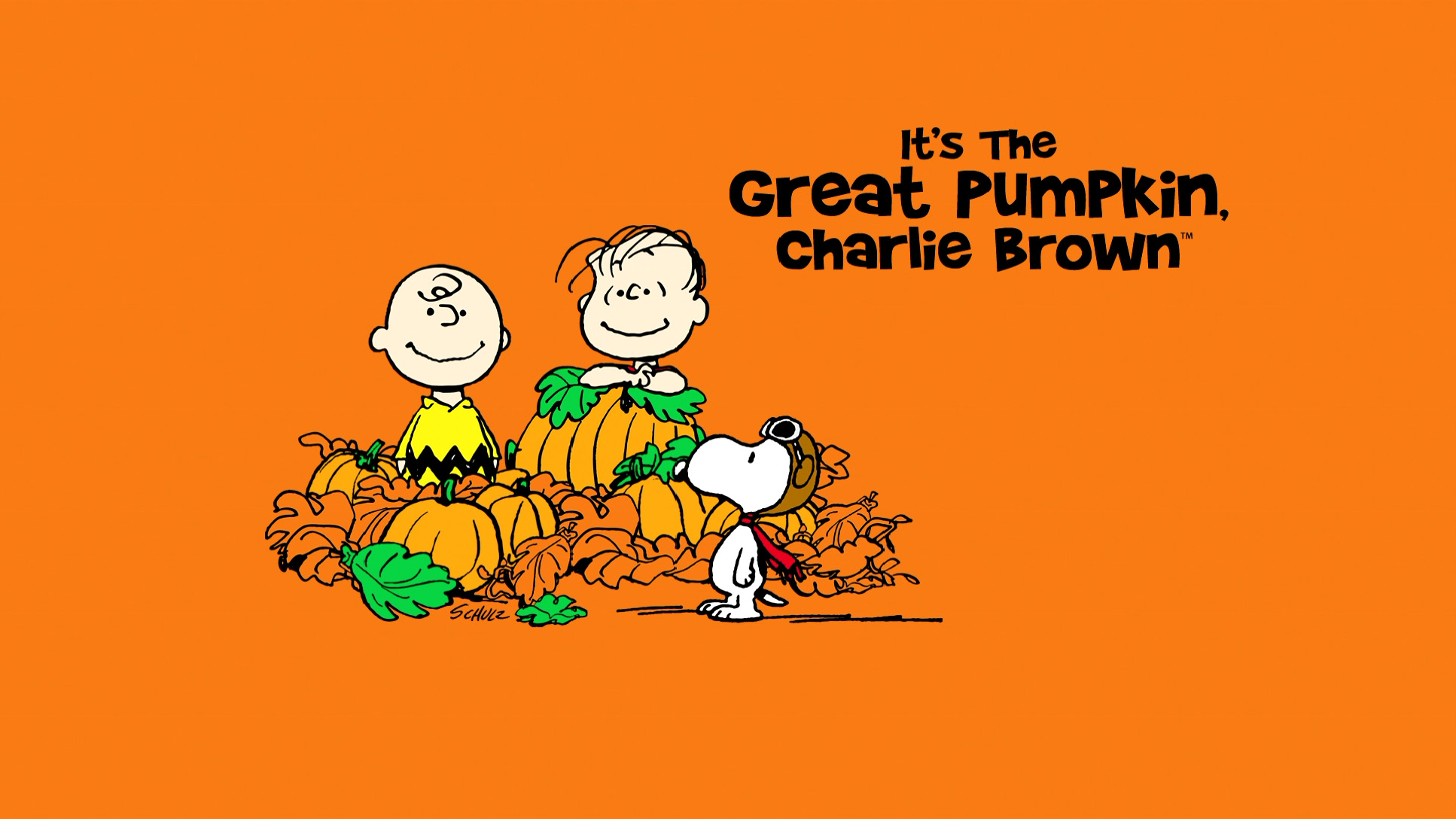 great-pumpkin-charlie-brown-background-hd | wallpaper.wiki