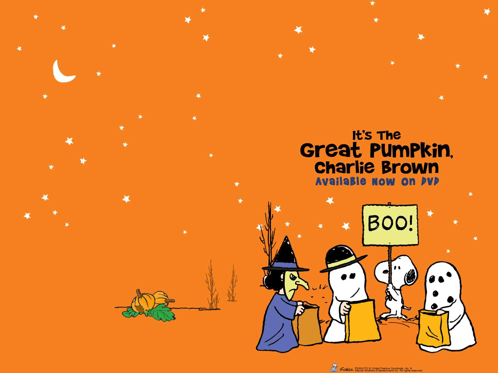 great-pumpkin-charlie-brown-backgrounds-hd | wallpaper.wiki