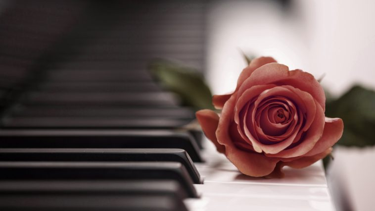 HD Rose Piano Wallpapers 758x426