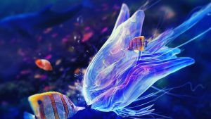 Jellyfish Wallpaper Download Free