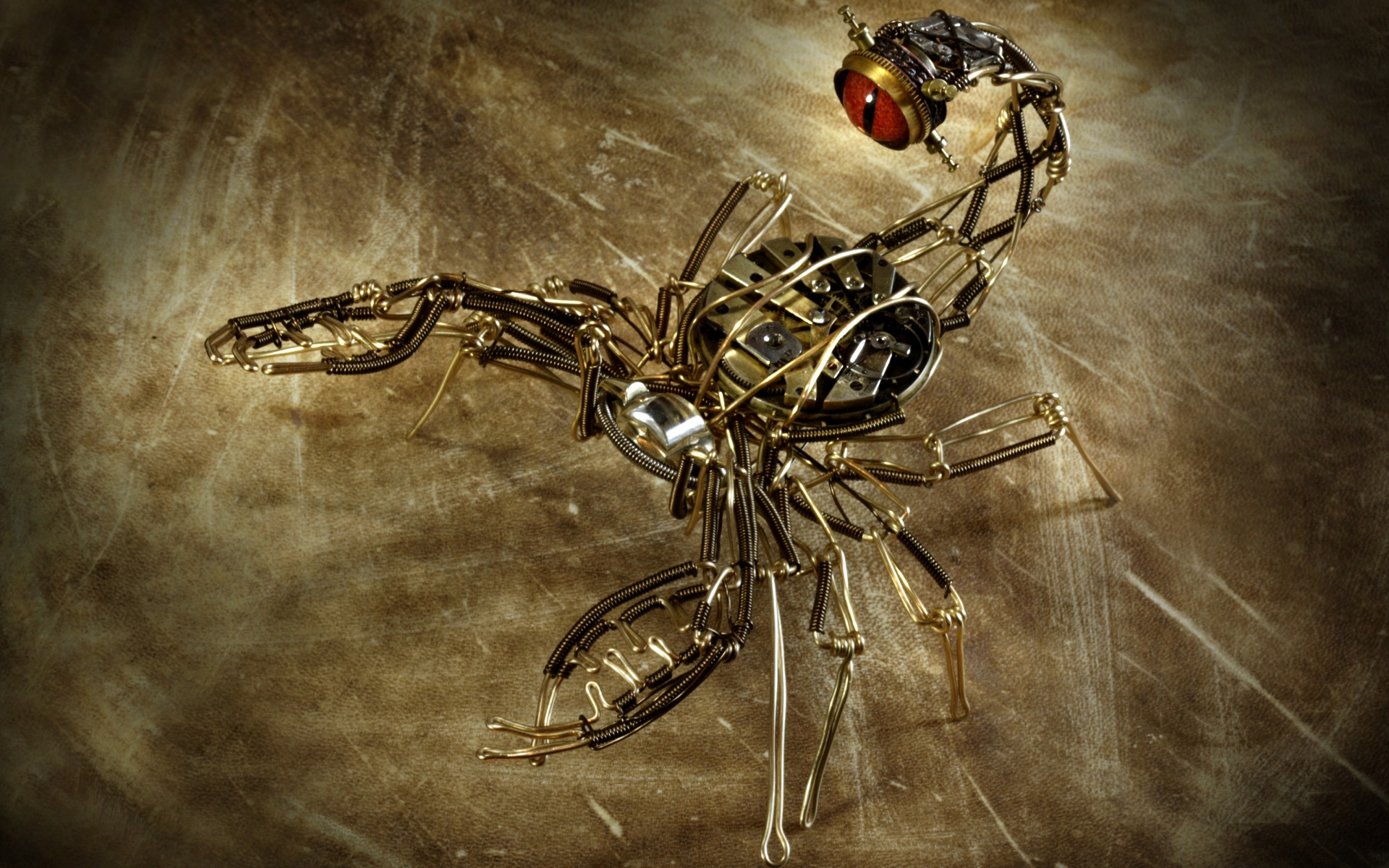 Scorpion-Photo-HD