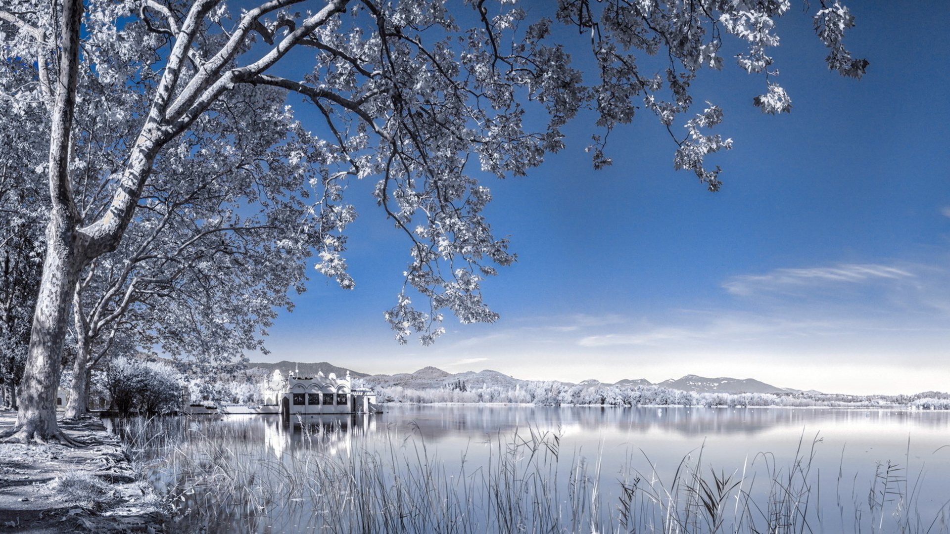 winter background landscape