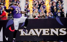 Ravens Backgrounds Free Download