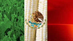 Cool Mexican HD Backgrounds