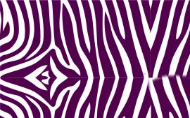 Zebra Print Wallpaper HD