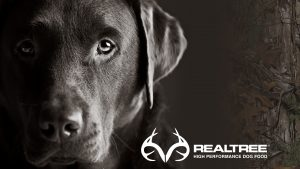 Realtree Wallpapers HD