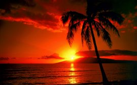 Sunset Beaches HD Images