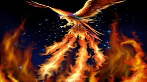 Phoenix Bird Wallpaper HD