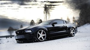Mustang HD Wallpaper High Quality
