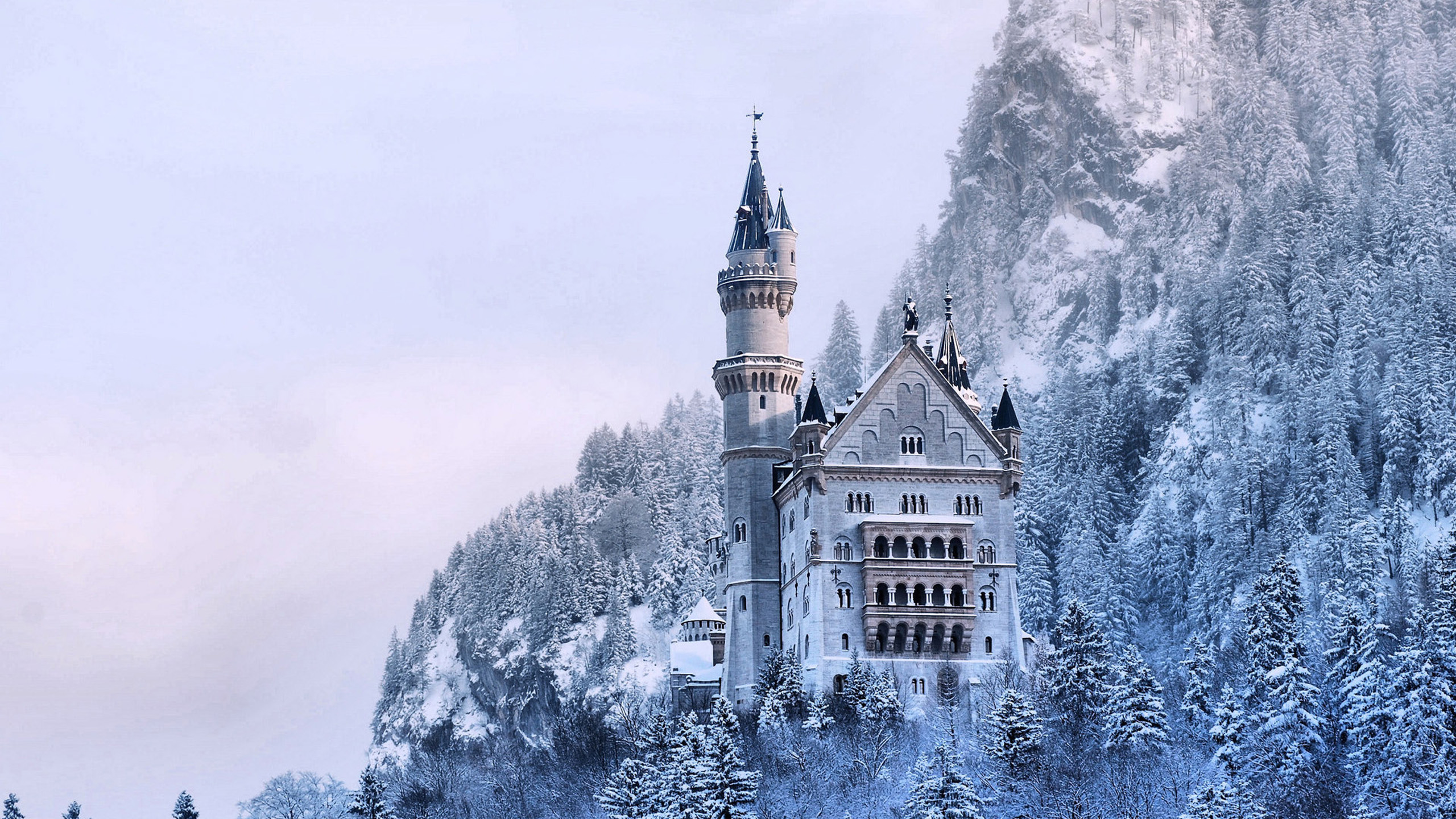 Frozen Neuschwanstein Castle Wallpapers 2560x1440