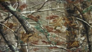 Free Realtree Camo Wallpapers Download