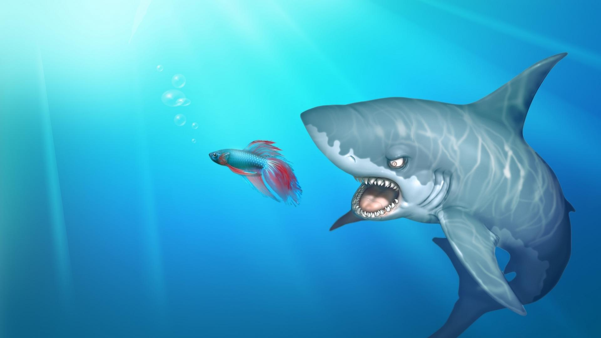 Shark-Backgrounds-Download-Free